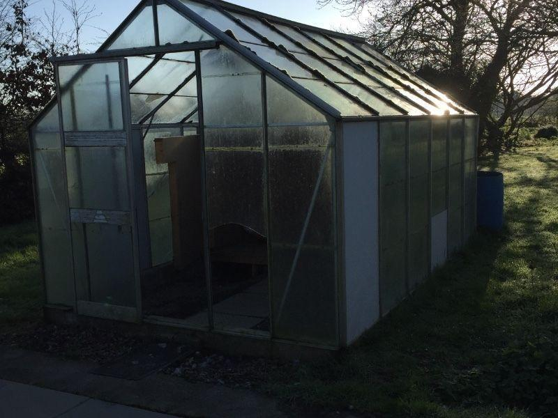 Greenhouse/ glasshouse