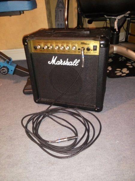 Marshall Amp and 6m Cable